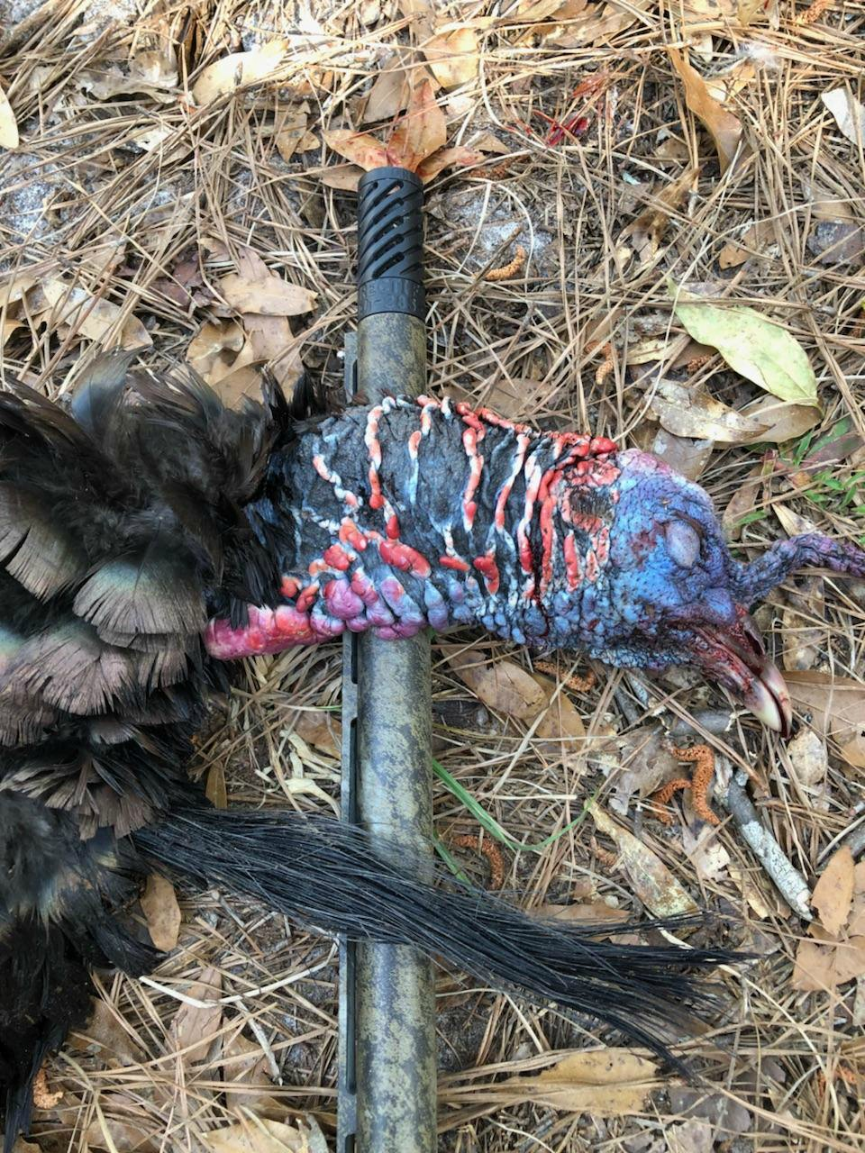 Turkey kill - Rectifire Choke tube